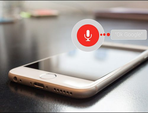 Voice Search 2030